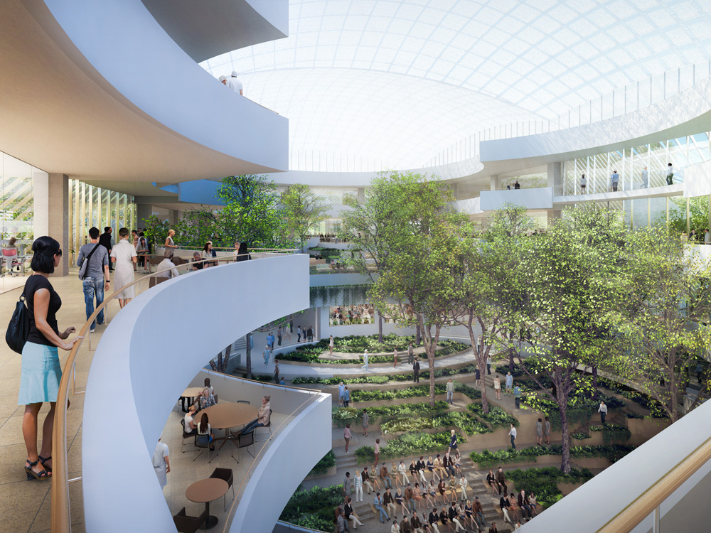 safdie architects completes design for its first project in brazil the albert einstein education and research center envisioned as an urban oasis - Architects Design